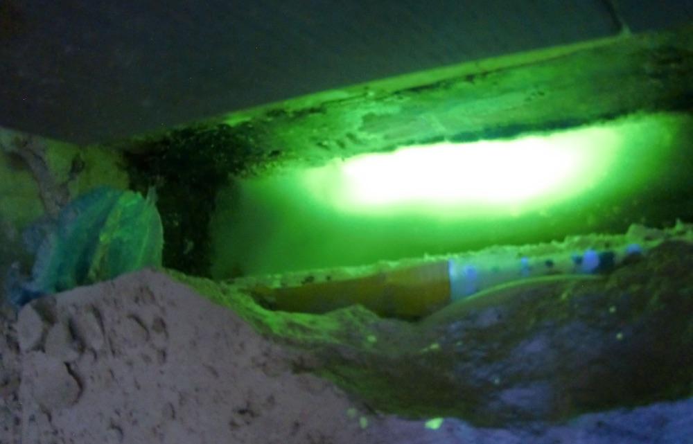 Test d'infiltration avec fluorine et lampe UV